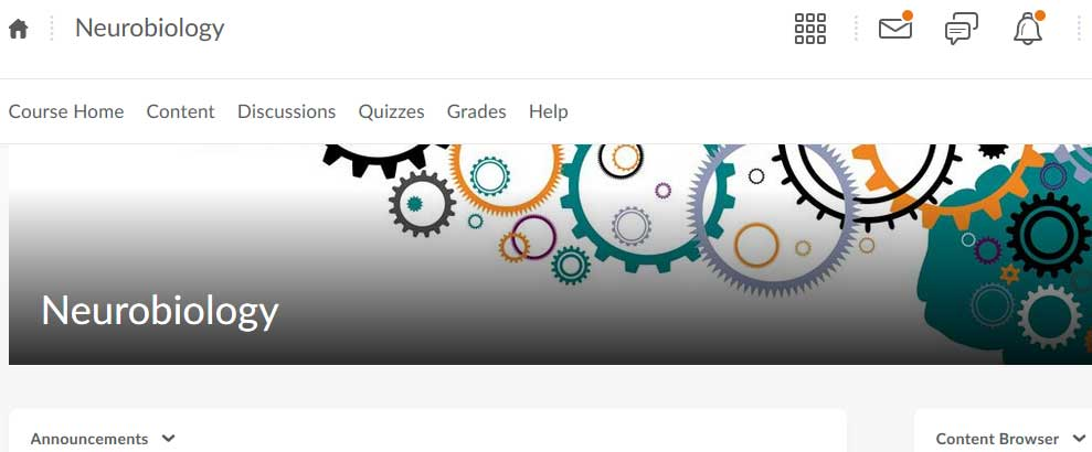 Screenshot of D2L homepage; decorative image.